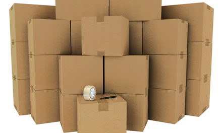 {Full Packing Services}